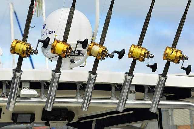 Best Spinning Reel | Line of Spinning Reels