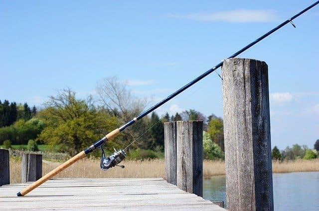 Best Inshore Fishing Rods