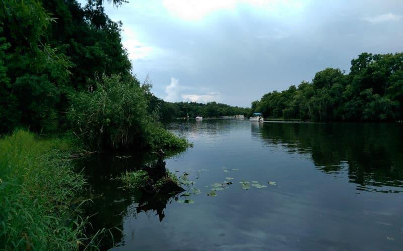 St. John's River | Kayaking In Florida