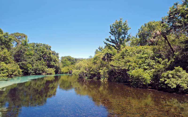 Weeki Wachee | Kayaking In Florida