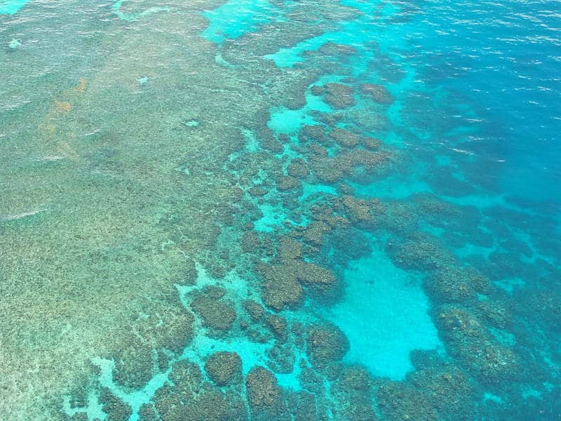 Best Places To Dive - Australia - Great Barrier Reef