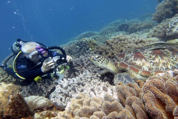 Best Places To Dive - Philippines