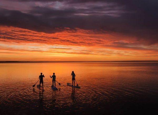 choose a paddle board